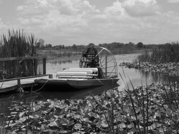 Alligator Alley Photograph - Florida Everglades by Kathryn Blackman