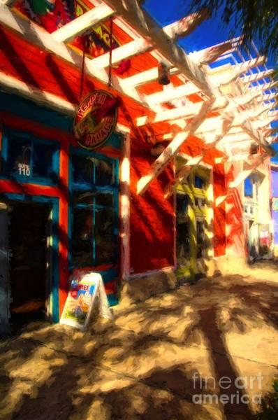 Photograph - Florida Fantasies by Mel Steinhauer