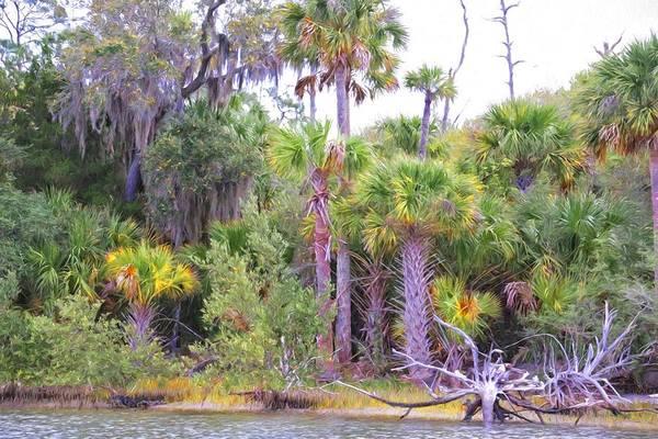 Photograph - Florida Greens by Alice Gipson