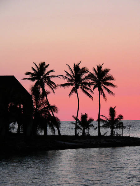 Photograph - Florida Keys Sunset by Kathy K McClellan