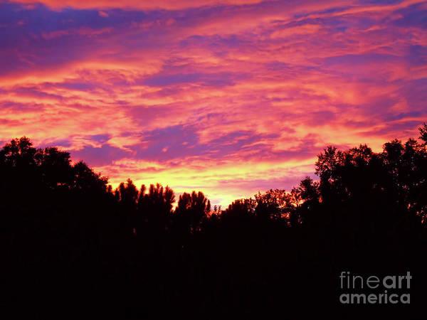 Photograph - Florida Sky On Fire by D Hackett