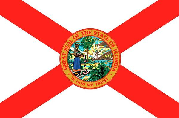 Southern Pride Wall Art - Painting - Florida State Flag by American School