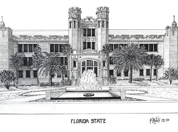 Wall Art - Drawing - Florida State by Frederic Kohli