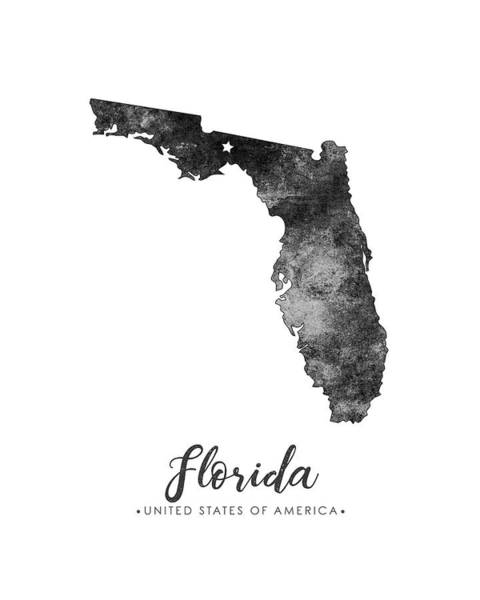 Map Of United States Mixed Media - Florida State Map Art - Grunge Silhouette by Studio Grafiikka
