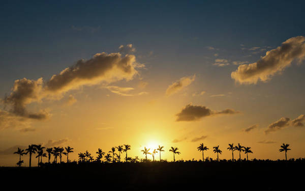 Photograph - Florida Sunset by Framing Places