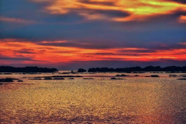 Cedar Key Photograph - Florida West Coast  by Louis Ferreira