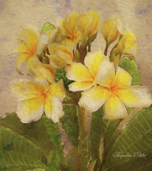 Digital Art - Floridian Bouquet by Jacqueline Sleter