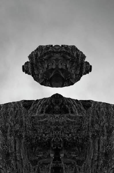 Photograph - Floating Head I Bw by David Gordon