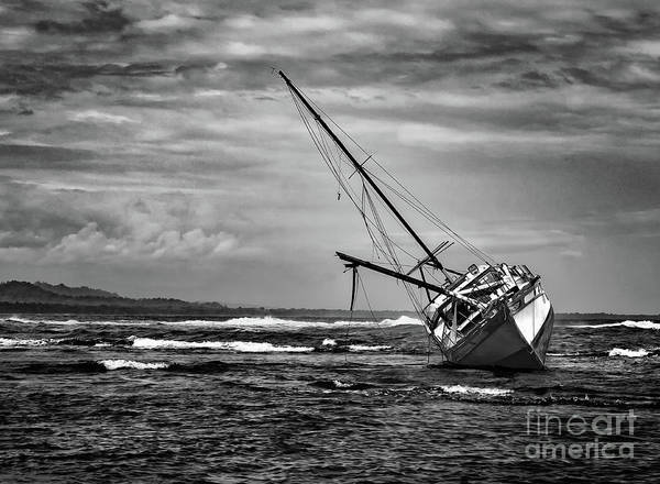 Cahuita Photograph - Floundering In The Storm by Norma Brandsberg