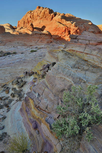 Photograph - Flow Of Colors In Valley Of Fire by Ray Mathis