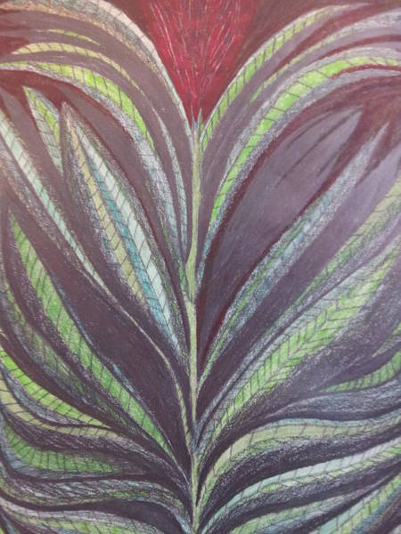 Primary Colors Drawing - Flower 2 by William Douglas