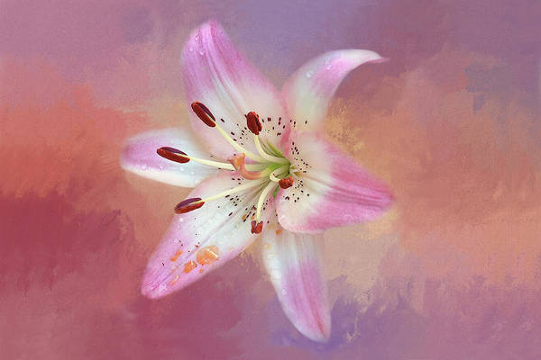 Grime Digital Art - Pink And Purple Lily by Billy Grimes