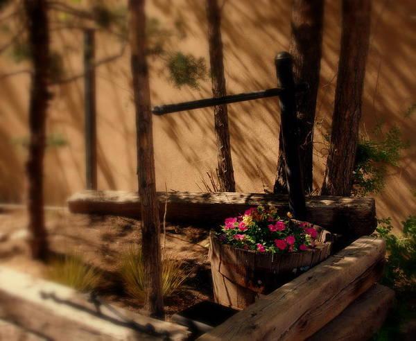 Photograph - Flower Basket by Susanne Van Hulst