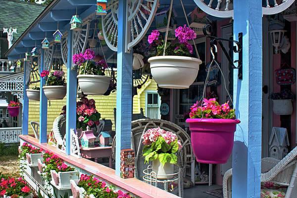Photograph - Flower Baskets Series 57 by Carlos Diaz