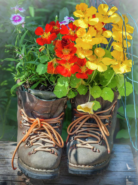 Photograph - Flower Boots by Mark Mille