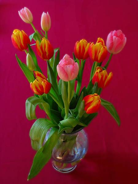 Photograph - Flower Bouquet by Juergen Roth
