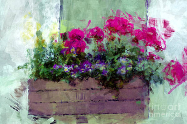 Photograph - Flower Box by Donna Bentley