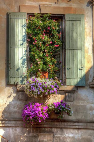 Photograph - Flower Box by John Magyar Photography