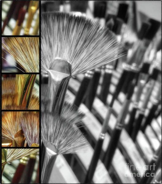 Wall Art - Photograph - Flower Brushes  by Steven Digman