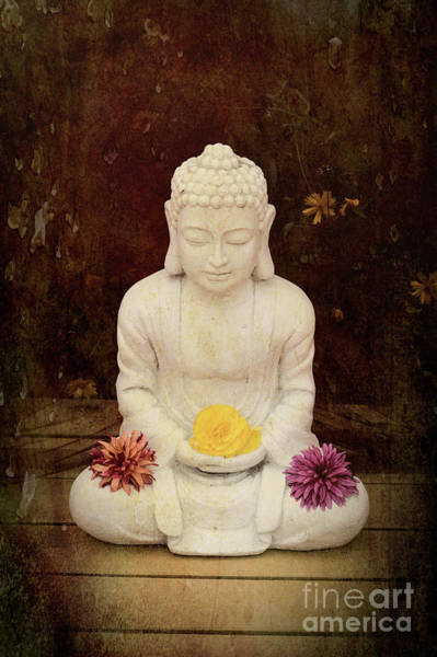 Wall Art - Photograph - Flower Buddha by Tim Gainey