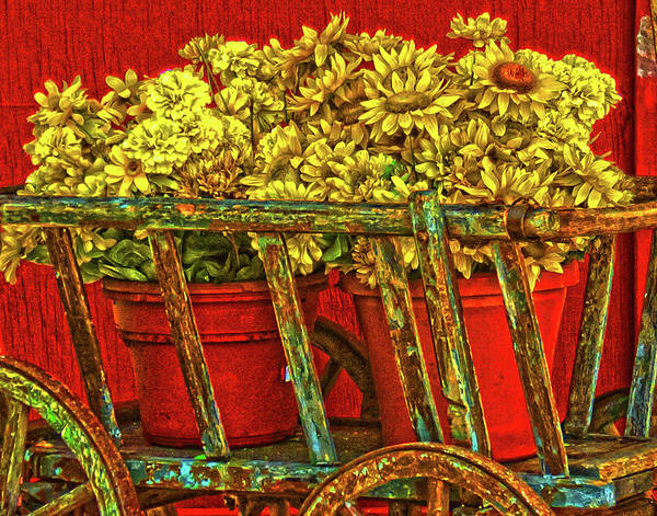 Flower Cart Art Print