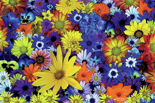 Wall Art - Painting - Flower Garden 1 by JQ Licensing
