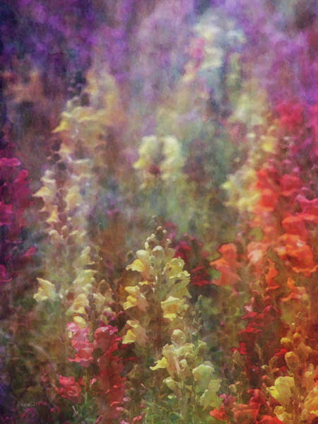 Photograph - Flower Garden 1871 Idp_2 by Steven Ward