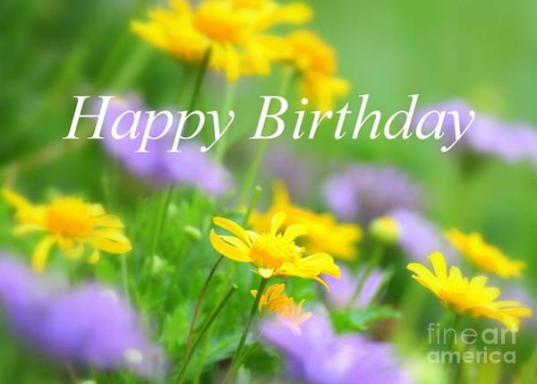 Photograph - Flower Garden Birthday Card by Carol Groenen