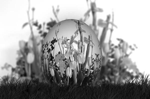 Photograph - Flower Garden For Coloring by Ericamaxine Price