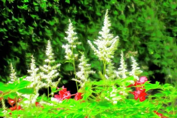Digital Art - Flower Garden by Rusty R Smith