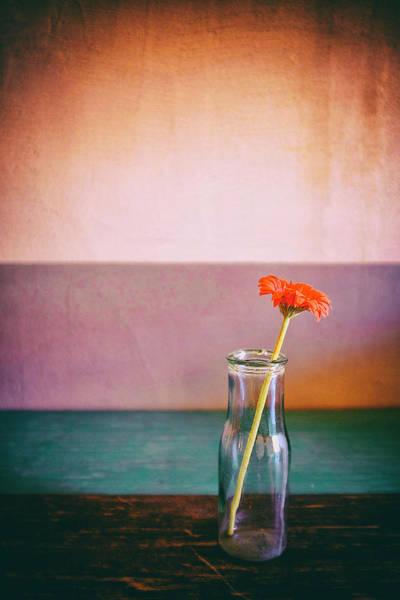 Photograph - Flower In A Bottle by Fabrizio Troiani