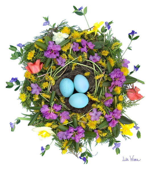 Digital Art - Flower Nest by Lise Winne
