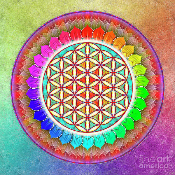 Sacred Mixed Media - Flower Of Live - Rainbow Lotus 1 by Dirk Czarnota