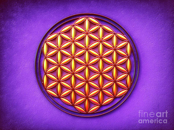 Wall Art - Digital Art - Flower Of Live - Sunlight On Purple Ground by Dirk Czarnota