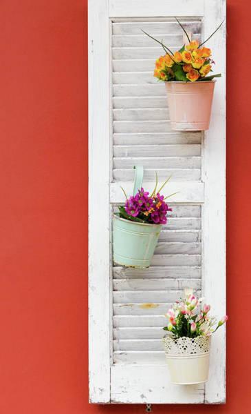 Nature Wall Art - Photograph - Flower Pots On A Wooden Window by Iordanis Pallikaras
