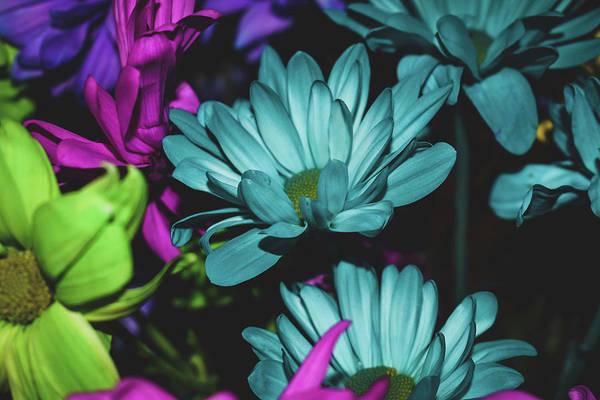 New Trend Digital Art - Flower Power by Serena Memering