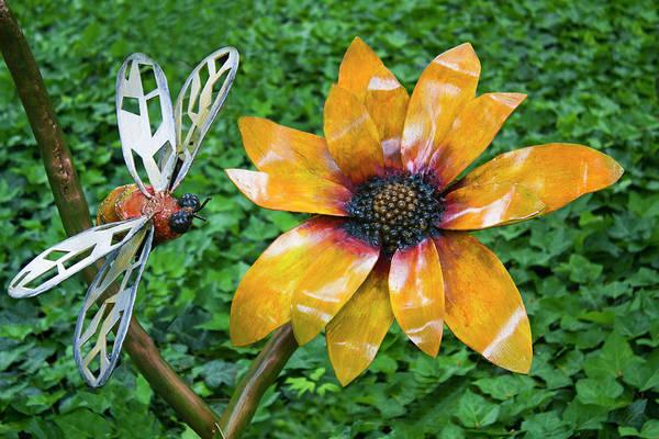 Photograph - Flower Power Series 1014 by Carlos Diaz