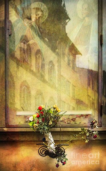 Photograph - Flower Saints by Craig J Satterlee