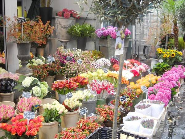 Flower Shop Amsterdam Art Print