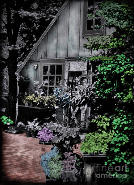 Solarized Photograph - Flower Shop by Colleen Kammerer