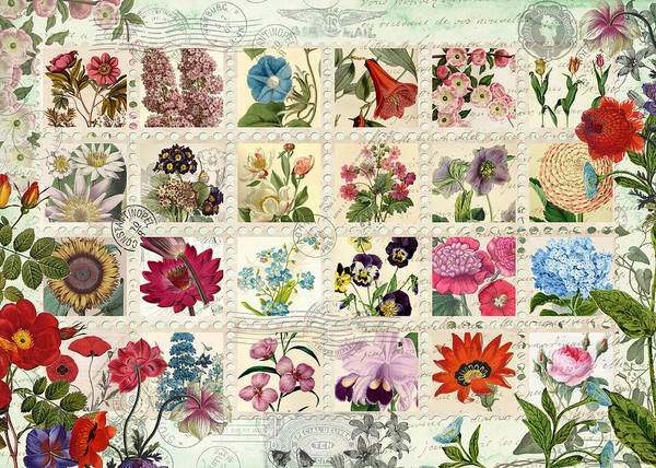 Wall Art - Photograph - Flower Stamps by MGL Meiklejohn Graphics Licensing
