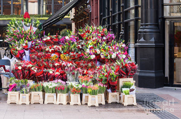 Photograph - Flower Stand In Dublin by Les Palenik