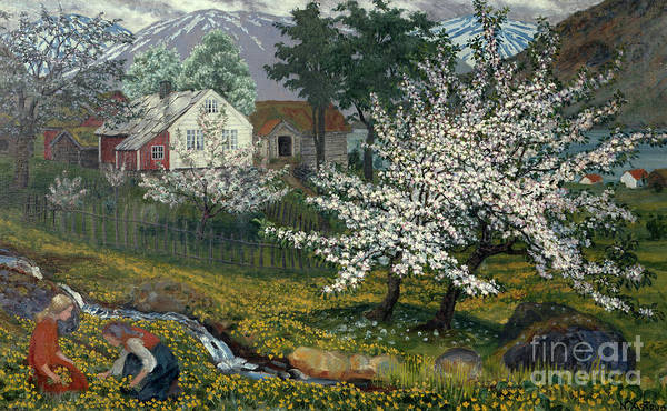 Nikolai Astrup Painting - Flowering Apple Tree At Stroemsbo Farm by Nikolai Astrup