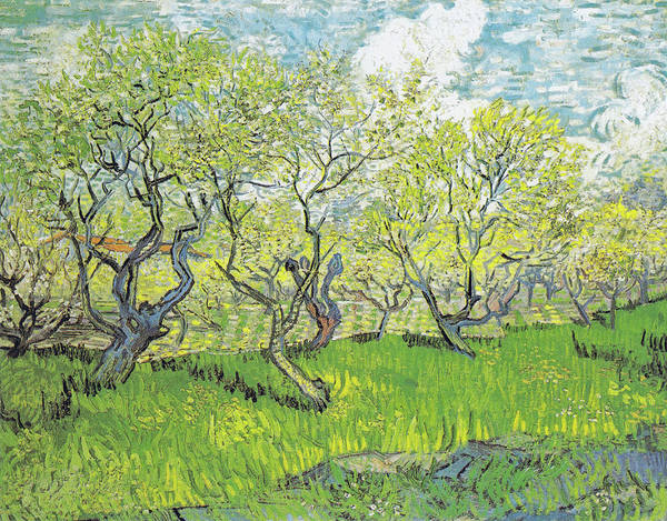 Painting - Flowering Orchard by Vincent van Gogh