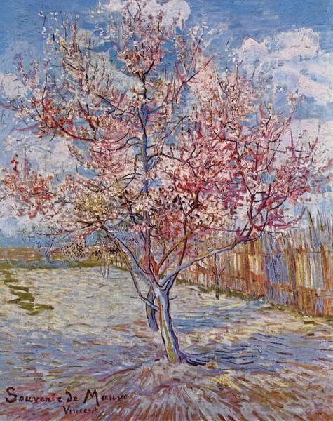 Painting - Flowering Peach Tree 1888 by Joy of Life Art Gallery - Vincent Van Gogh