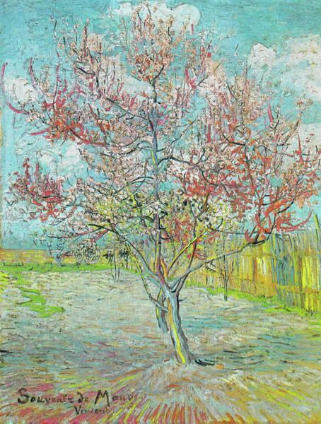 Painting - Flowering Peach Tree, Memory Of Mauve by Vincent van Gogh