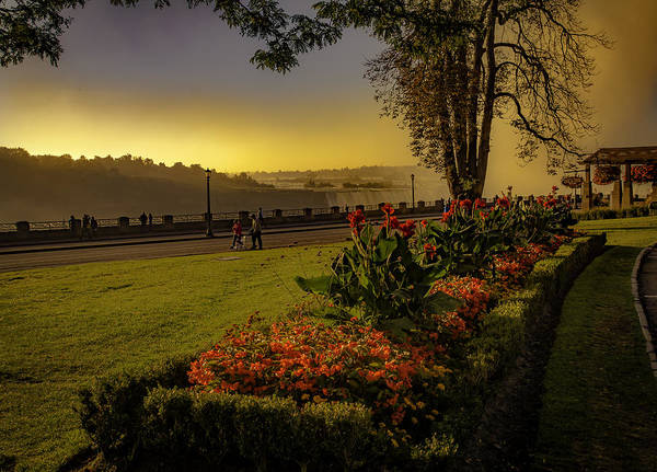 Photograph - Flowers By The Falls by Francisco Gomez