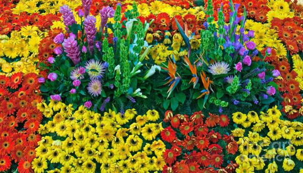 Tournament Of Roses Photograph - Flowers Flowers Flowers by David Zanzinger