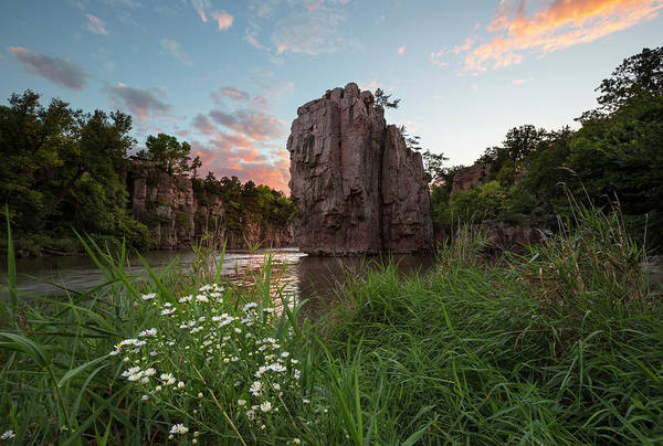Focus Wall Art - Photograph - Flowers For The King by Aaron J Groen