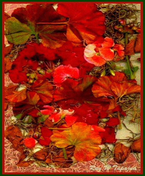 Mixed Media - Flowers For You by Ray Tapajna